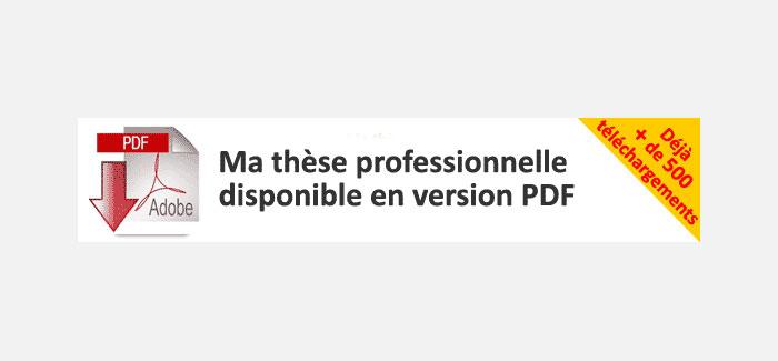 Téléchargez la thèse professionnelle de Thierry Pires